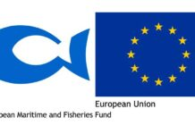 Emkf European Maritime And Fisheries Fund