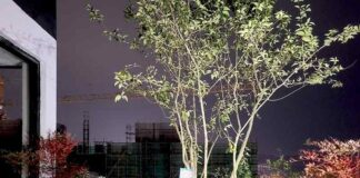 Easyhome Huanggang Vertical Forest