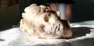 testa venere romana
