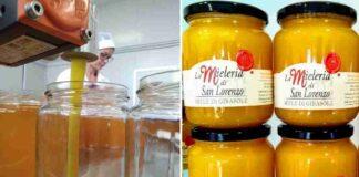 la mieleria san lorenzo in campo Pesaro e Urbino