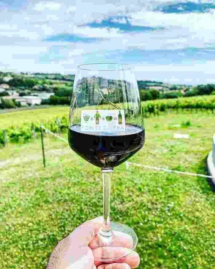 Vini Fontezoppa