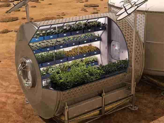 coltivazioni luna min
