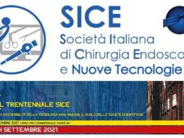 Logo nuovo SICE 2018