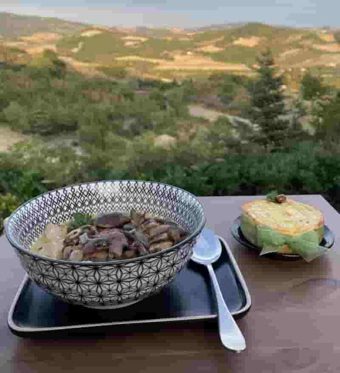 Wondrous Project Zuppa cremosa di pollo e funghi con tortina salata ai funghi e casciotta d'Urbino